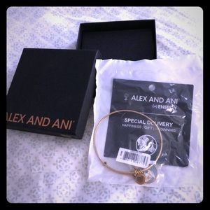 Alex and Ani: special delivery
